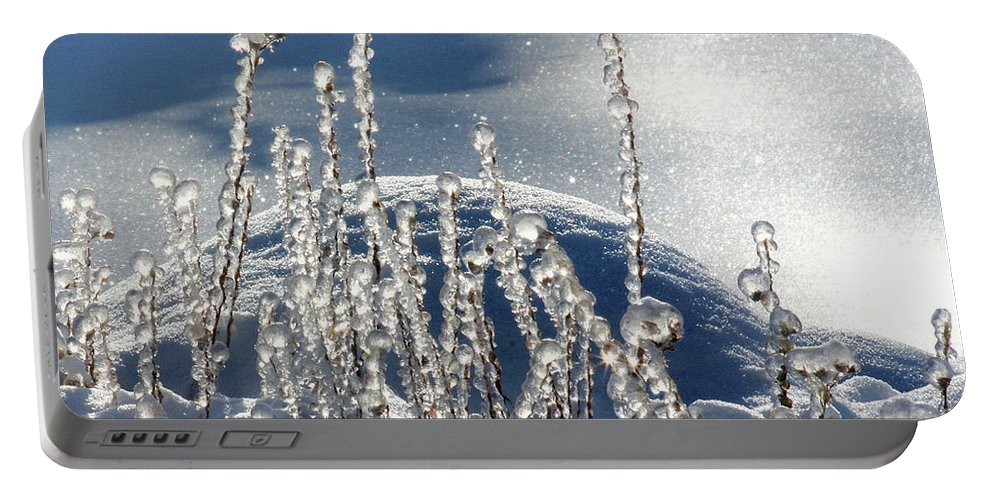 Icy Portable Battery Charger featuring the photograph Icy World by Doris Potter