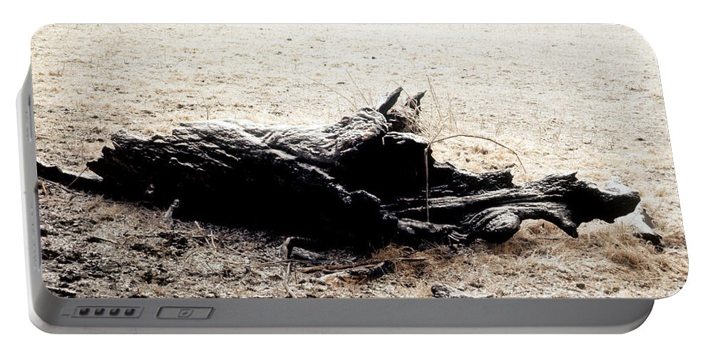 Log Portable Battery Charger featuring the photograph Ilimonoloth by Douglas Barnett