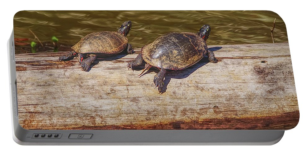 Turtles Portable Battery Charger featuring the photograph I'll Race You by Sandra Burm