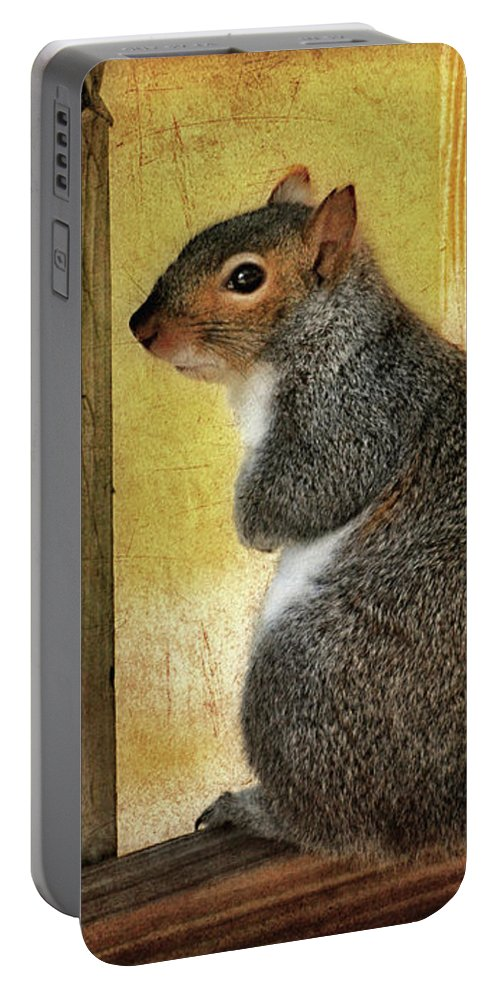 Squirrel Portable Battery Charger featuring the photograph I'm Sorry by Lois Bryan