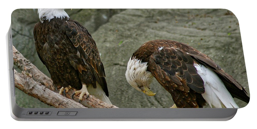 Eagle Portable Battery Charger featuring the photograph I'm Sorry by Michael Peychich