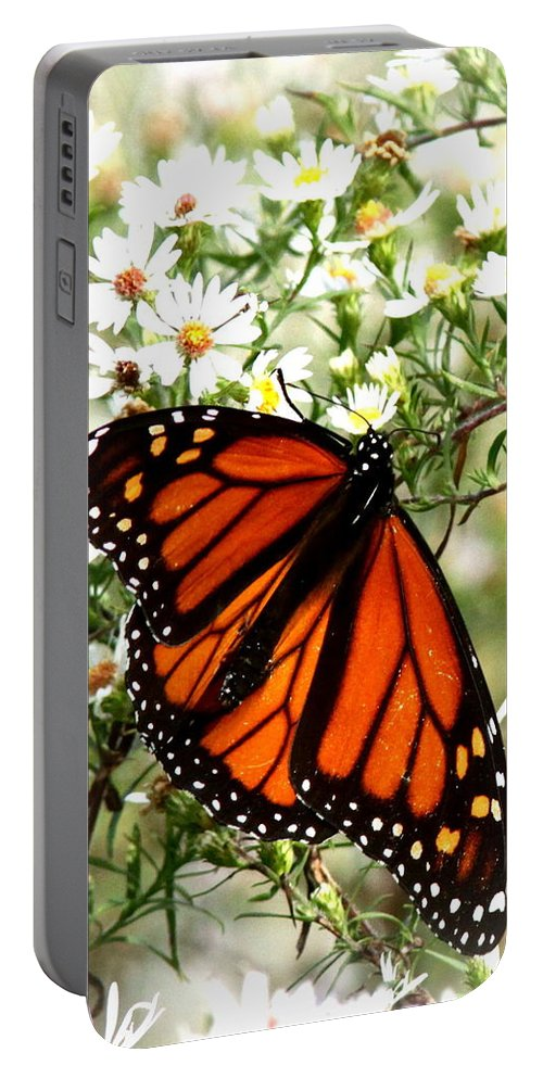 Butterfly Portable Battery Charger featuring the photograph Img_5284-001 - Butterfly by Travis Truelove