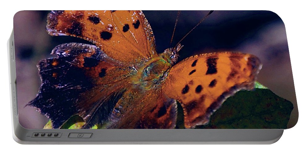 Butterfly Portable Battery Charger featuring the digital art Imperfect Satyr Comma by DigiArt Diaries by Vicky B Fuller