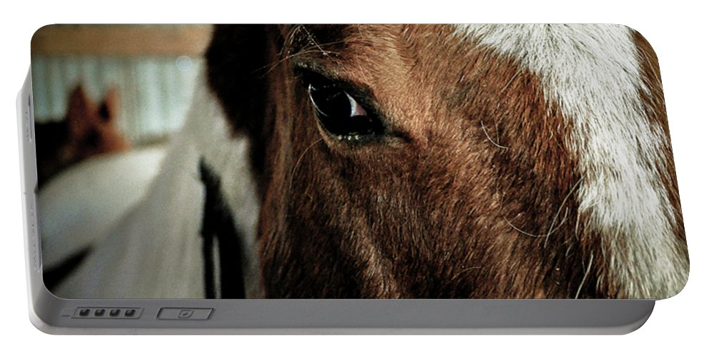 Clay Portable Battery Charger featuring the photograph In A Horse's Eye by Clayton Bruster