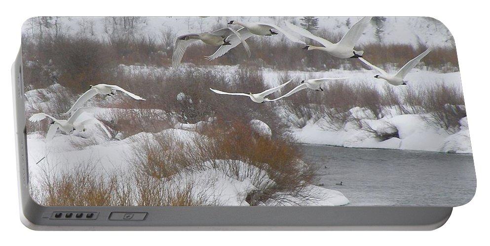 Bird Portable Battery Charger featuring the photograph In Flight by DeeLon Merritt