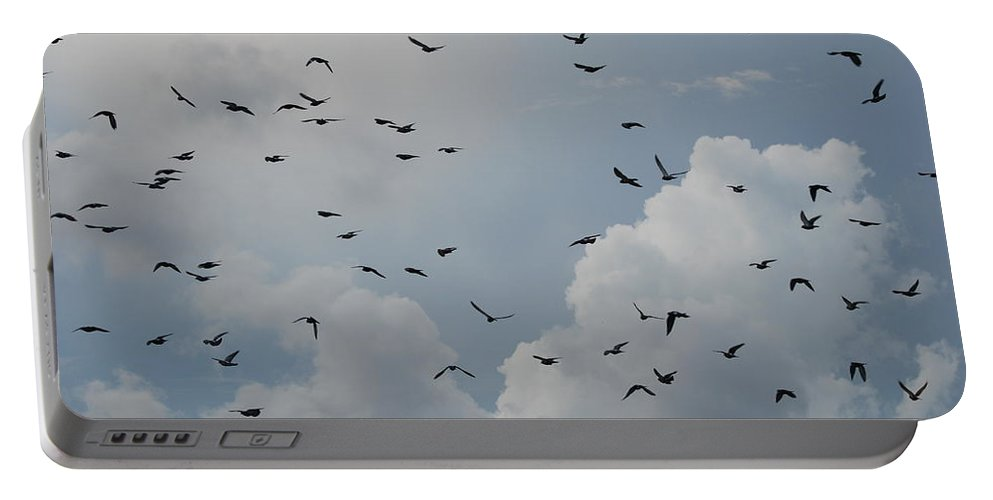 Birds Portable Battery Charger featuring the photograph In Flight by Rob Hans