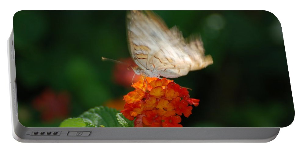 Butterfly Portable Battery Charger featuring the photograph In Living Color by Rob Hans