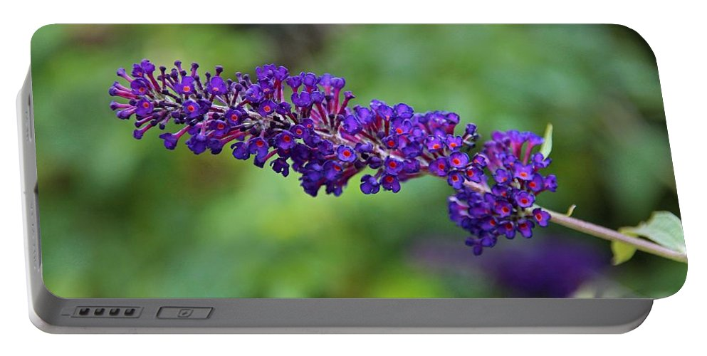 Butterfly Bush Portable Battery Charger featuring the photograph In The Butterfly Garden by Michiale Schneider