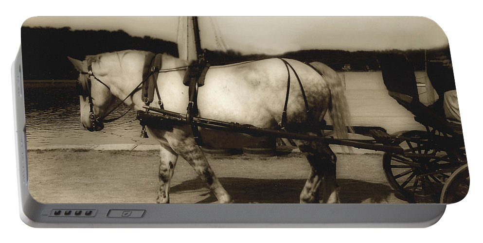 Horse Portable Battery Charger featuring the photograph In The Cool Of The Evening by RC DeWinter
