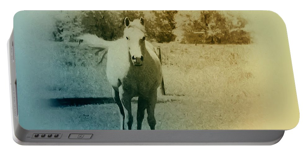 Horses Portable Battery Charger featuring the photograph In The Meadow by Bill Cannon