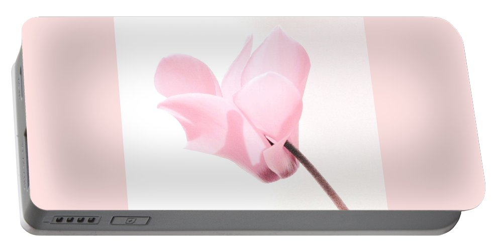 Cyclamen Portable Battery Charger featuring the photograph In The Pink by Angela Davies
