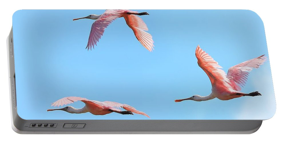 Bird Portable Battery Charger featuring the photograph In The Pink by John Absher