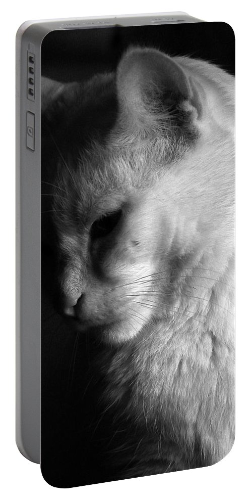 Nature Portable Battery Charger featuring the photograph In The Shadows by Bob Orsillo