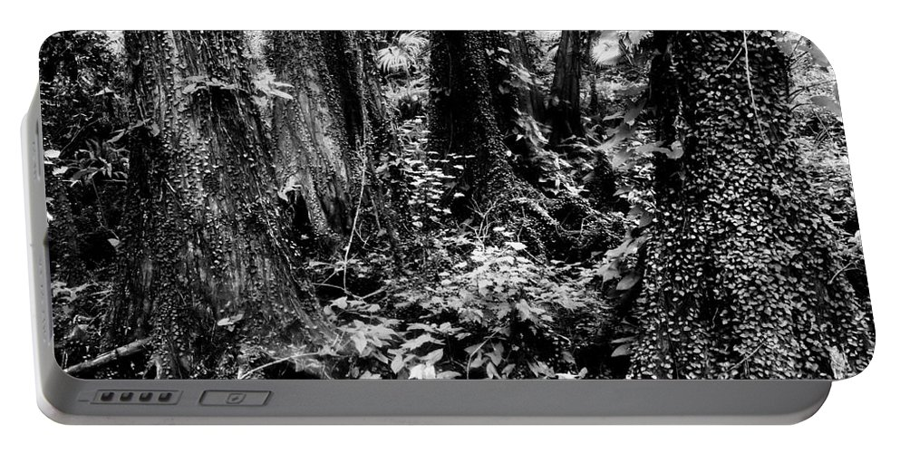 Forest Portable Battery Charger featuring the photograph In Thick by David Lee Thompson