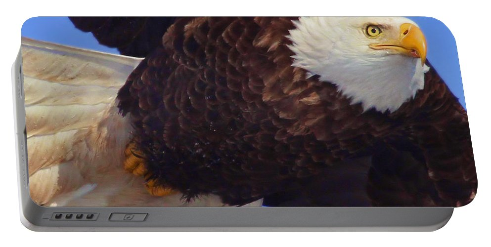 Eagle Portable Battery Charger featuring the photograph In Your Face by John Absher