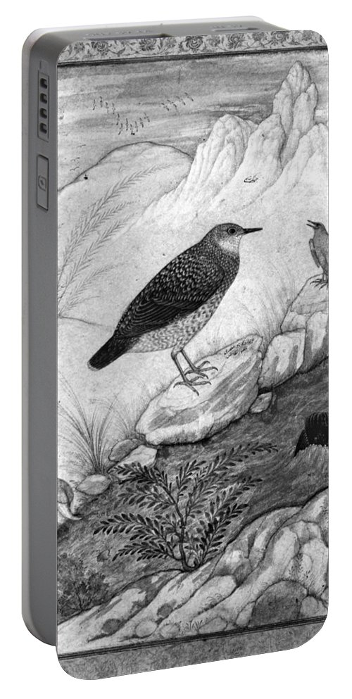 17th Century Portable Battery Charger featuring the photograph India: Water Ouzels by Granger