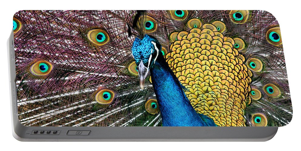 Aloha Portable Battery Charger featuring the photograph Indian Blue Peacock by Sharon Mau