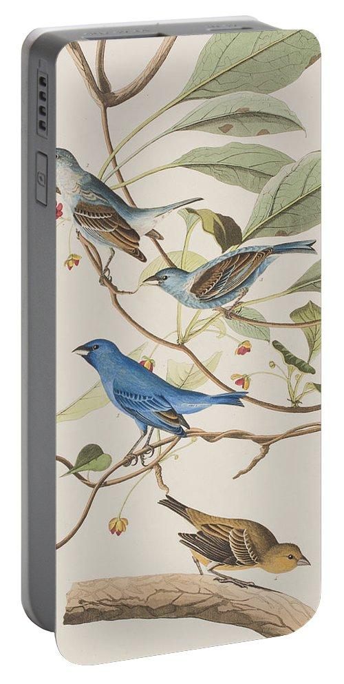 Indigo Bird Portable Battery Charger featuring the painting Indigo Bird by John James Audubon