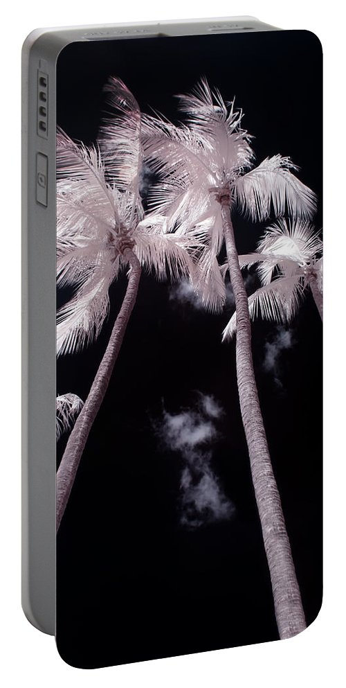 3scape Photos Portable Battery Charger featuring the photograph Infrared Palm Trees by Adam Romanowicz