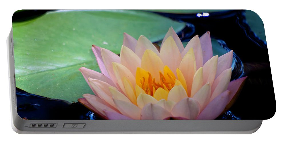 Fine Art Photo Portable Battery Charger featuring the photograph Inner Peace by Ken Frischkorn