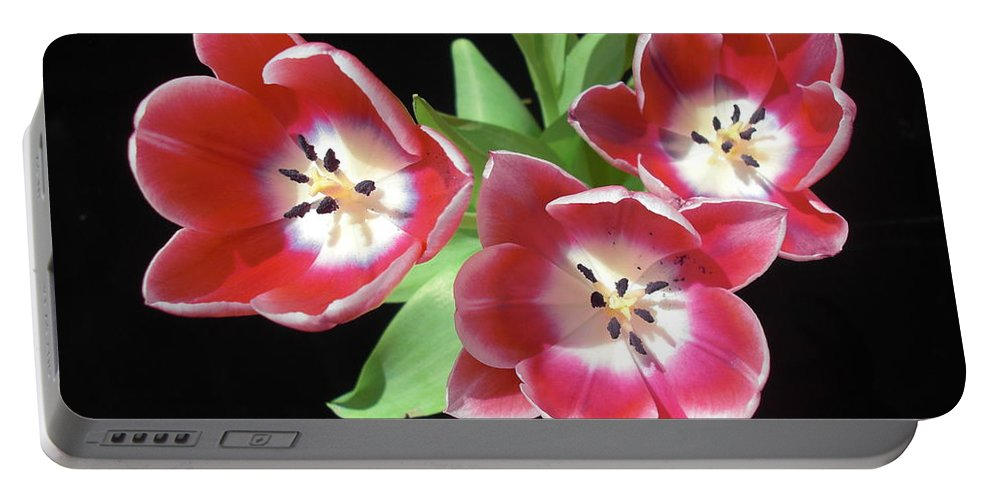 Flower Photograph Portable Battery Charger featuring the photograph Integrity by Michele Penn