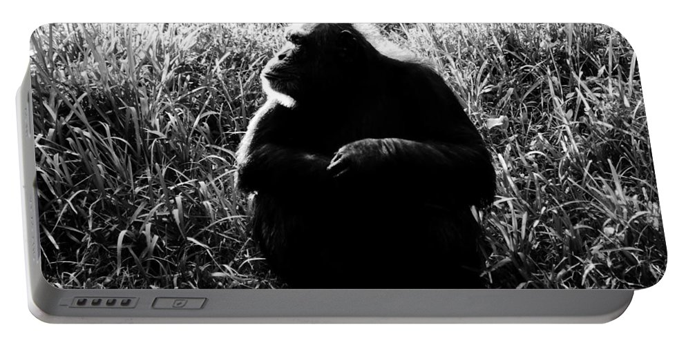 Smart Portable Battery Charger featuring the photograph Intelligence by David Lee Thompson