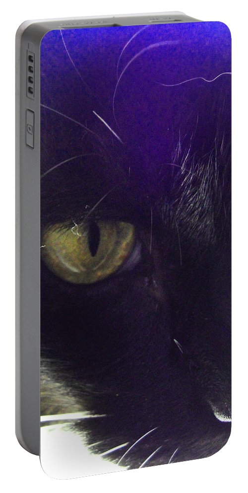 Cat Portable Battery Charger featuring the photograph Intense by Susan Baker