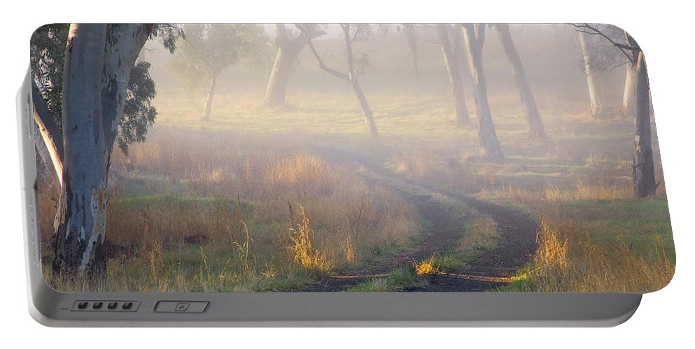 Mist Portable Battery Charger featuring the photograph Into the Mist by Mike Dawson