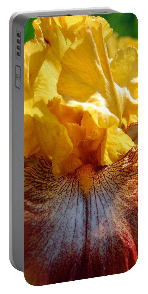Flower Portable Battery Charger featuring the photograph Iris 1 by Amy Fose