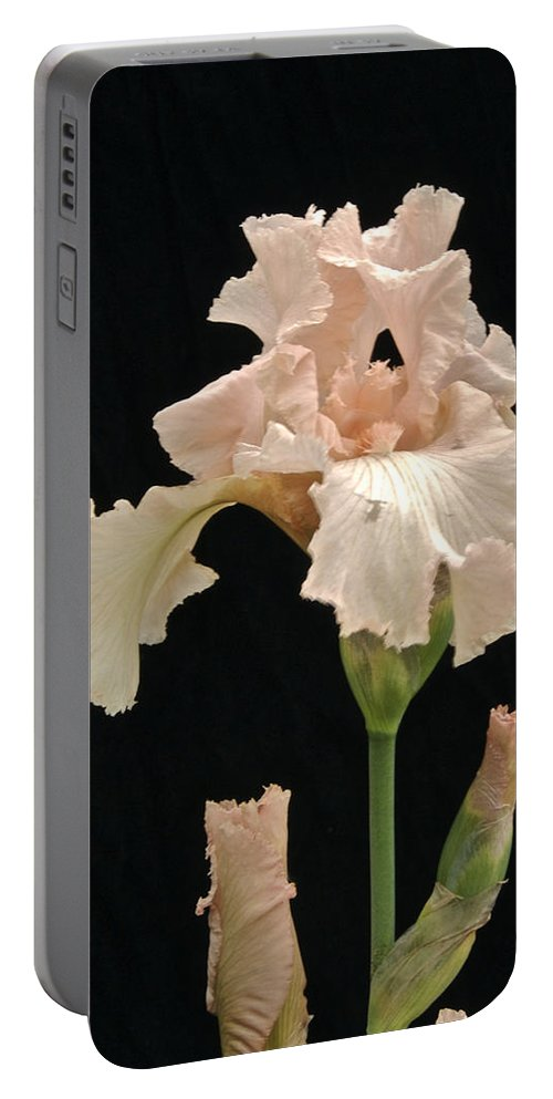 Flower Portable Battery Charger featuring the photograph Iris 2 by Michael Peychich