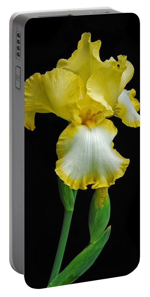 Flower Portable Battery Charger featuring the photograph Iris 4 by Michael Peychich