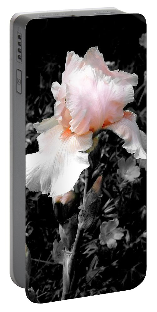 Flower Portable Battery Charger featuring the photograph Iris Emergance by Steve Karol