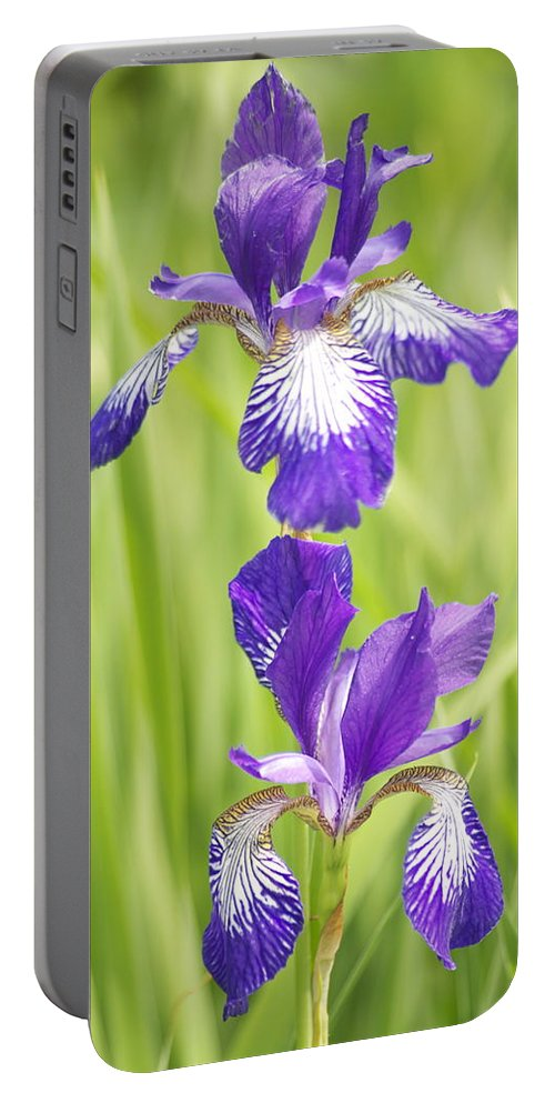 Flower Portable Battery Charger featuring the photograph Iris Pair by Michael Peychich