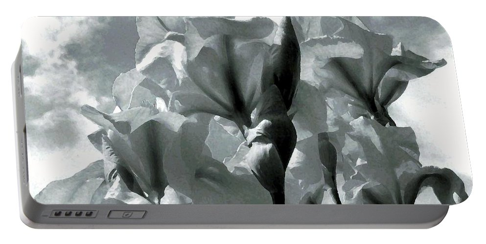 Irises Portable Battery Charger featuring the photograph Irises by Will Borden