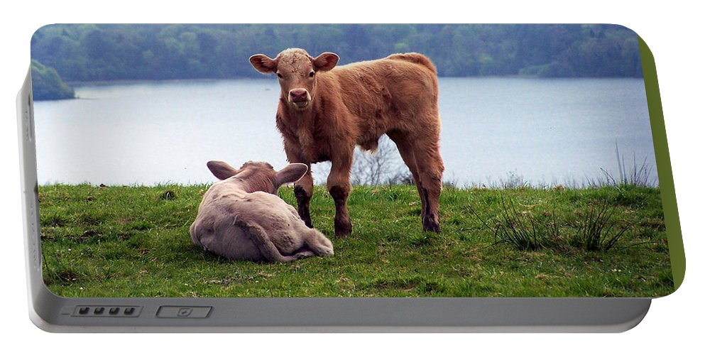 Ireland Portable Battery Charger featuring the photograph Irish Calves At Lough Eske by Teresa Mucha