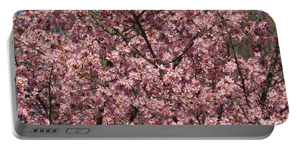 Floral Portable Battery Charger featuring the photograph First Spring Blossom by Arden Billings