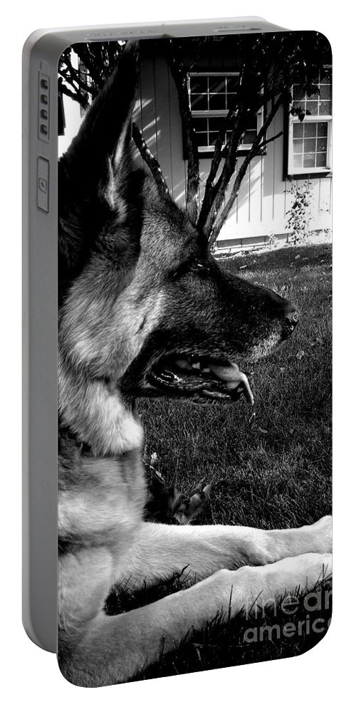 German Shepherd Portable Battery Charger featuring the photograph Isabelles Portrait by LKB Art and Photography