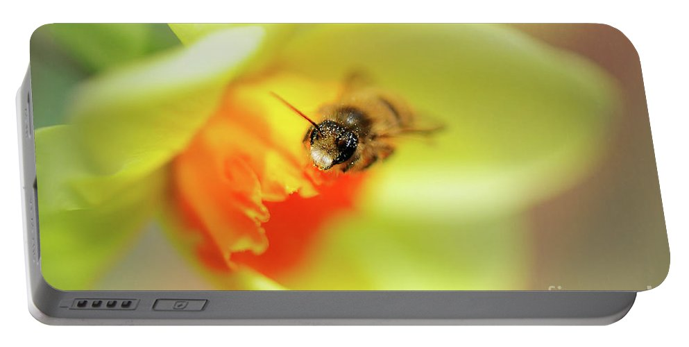 Bee Portable Battery Charger featuring the photograph It Just Wouldn't Bee Spring Without ... by Lois Bryan