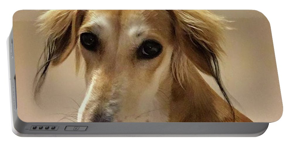 Dogsofinstagram Portable Battery Charger featuring the photograph It Looks Like It Will Be A Bad Hair Day by John Edwards