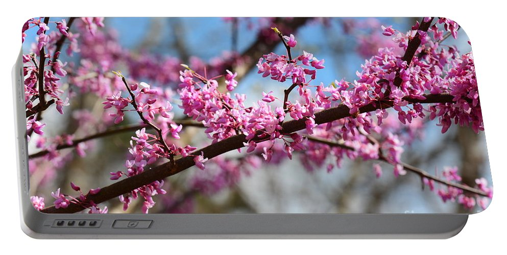 It's Spring 2016 Portable Battery Charger featuring the photograph It's Spring 2016 by Maria Urso