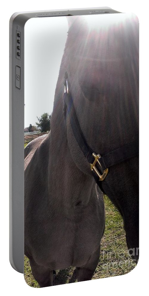 Horse Portable Battery Charger featuring the photograph Ive Got Sunshine by LKB Art and Photography