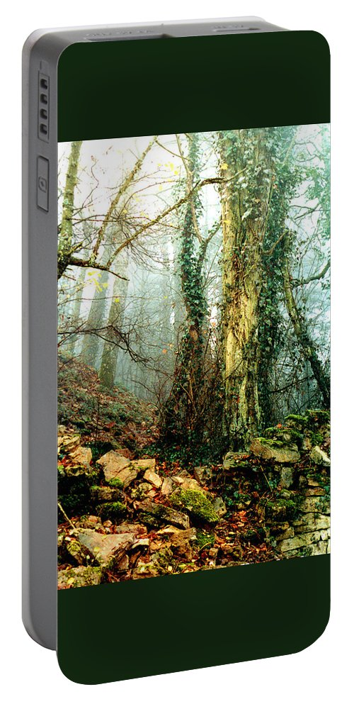 Ivy Portable Battery Charger featuring the photograph Ivy In The Woods by Nancy Mueller