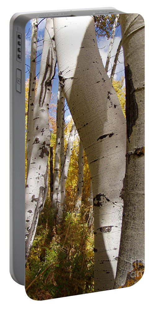 Trees Portable Battery Charger featuring the photograph Jackson Hole Wyoming by Amanda Barcon