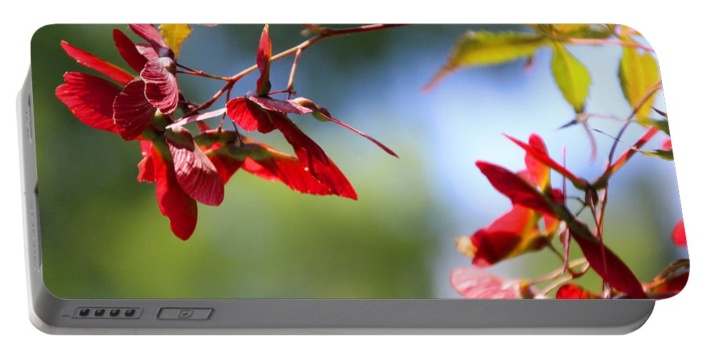 Japanese Maple Portable Battery Charger featuring the photograph Japanese Maple 1782 by Carolyn Stagger Cokley