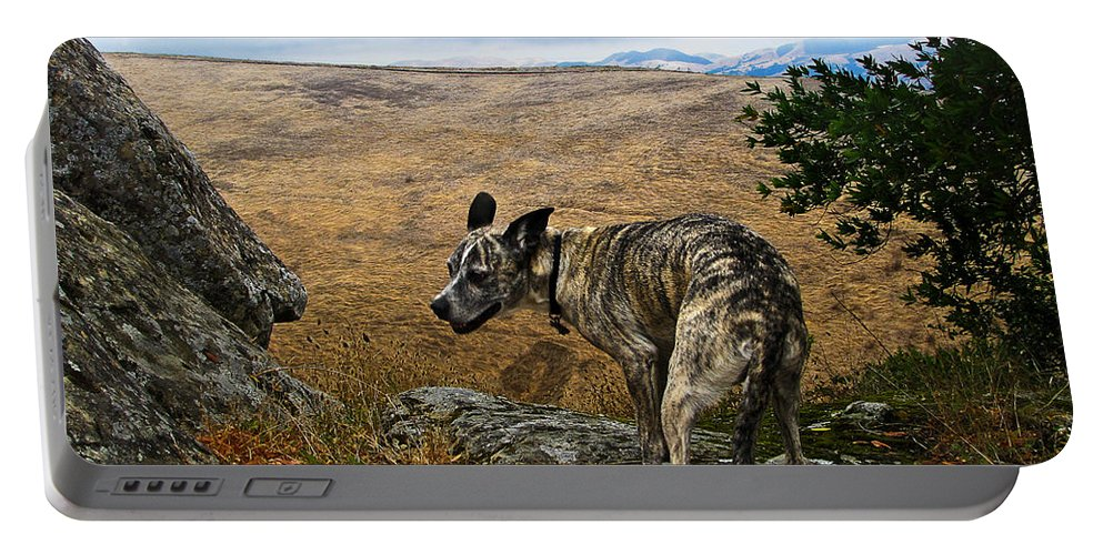 Las Trampas Portable Battery Charger featuring the photograph Jazz On The Rocks by Karen W Meyer