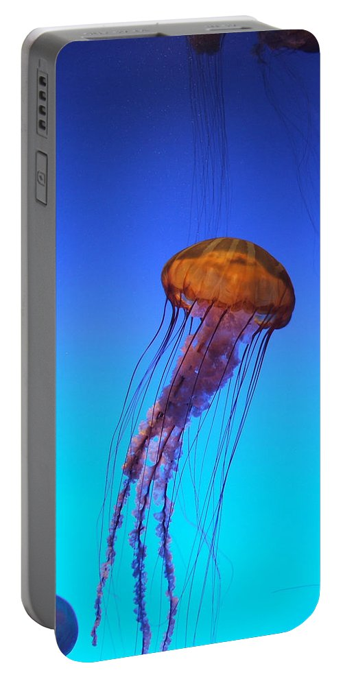 Jellyfish Portable Battery Charger featuring the photograph Jellyfish by Robert Meanor