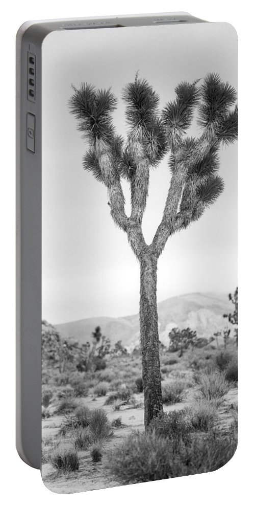 California Portable Battery Charger featuring the photograph Joshua Tree Before Storm by Alex Snay