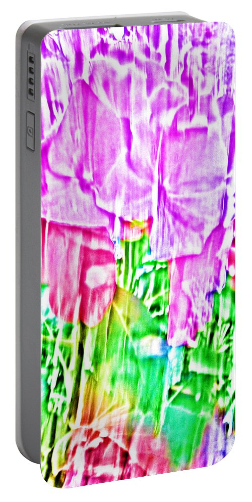 Flower Portable Battery Charger featuring the photograph Joy by Casper Cammeraat