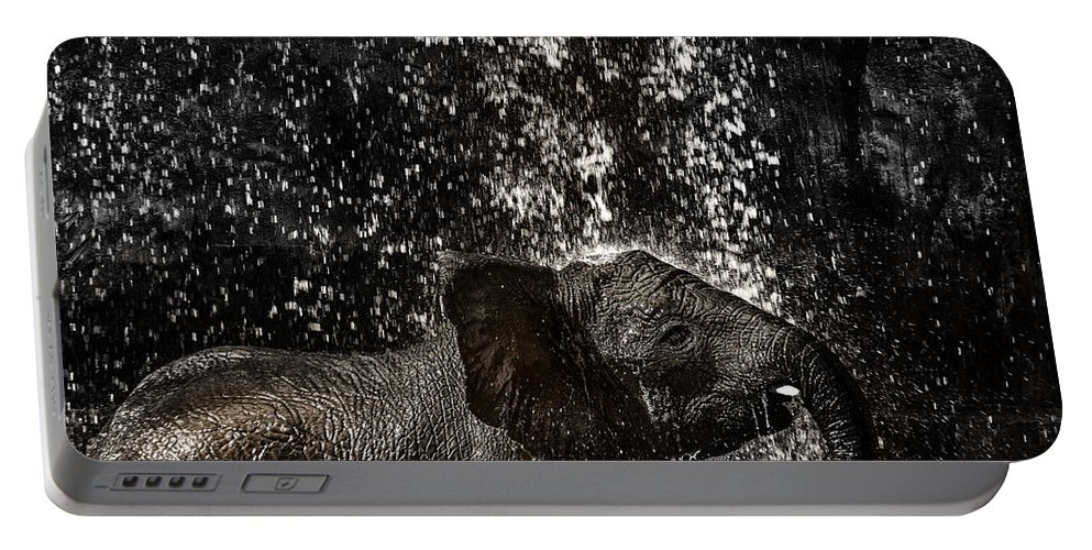 Elephant Portable Battery Charger featuring the photograph Joy Of Life by Edgar Laureano