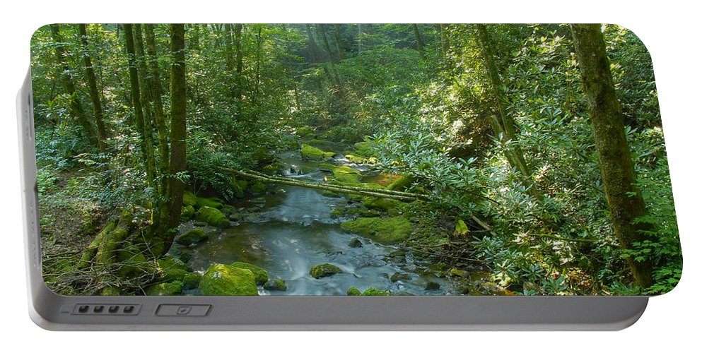Joyce Kilmer Memorial Forest Portable Battery Charger featuring the photograph Joyce Kilmer Memorial Forest by David Lee Thompson